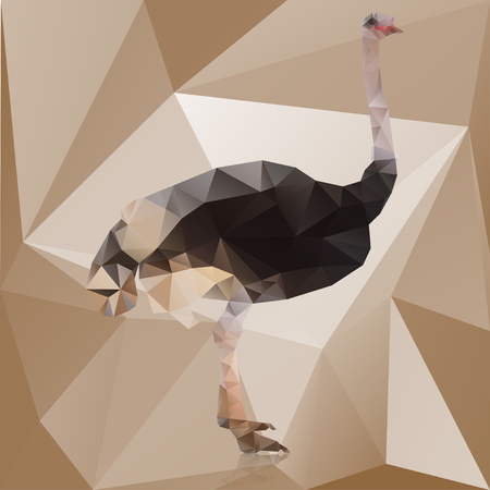 Color polygonal ostrich isolated on brown background . Çizim