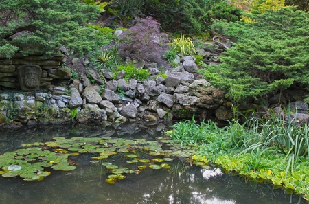 Natural stone pond landscaping with aquatic plants and water lilies in Toronto park