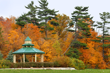 Inviting gazebo in park with nice view to the forest