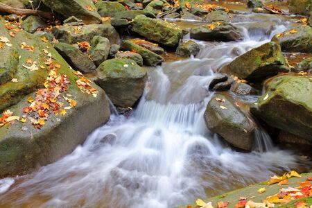 water cascades on a mountain river with fallen autumn leaves Stock Photo