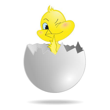 eggshell: Illustration of chicken in the eggshell