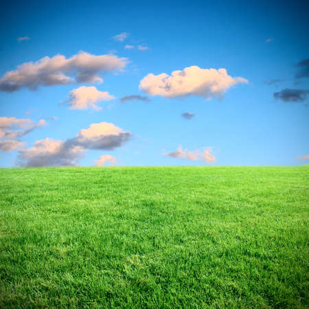 front or back yard: landscape meadow and sky Stock Photo