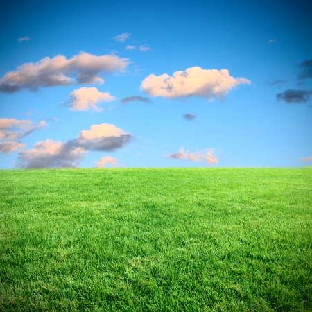 paesaggio prato e il cielo
