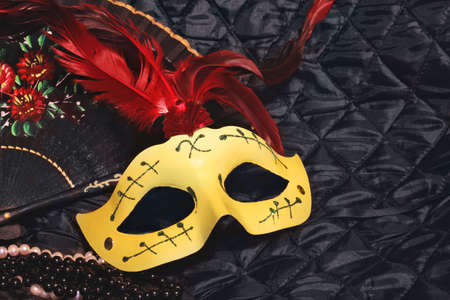 mask for carnival photo