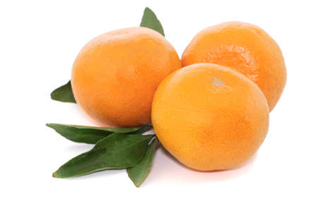 tangerine orange Stock Photo - 11491909