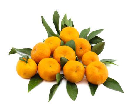 mandarino frutto isolato