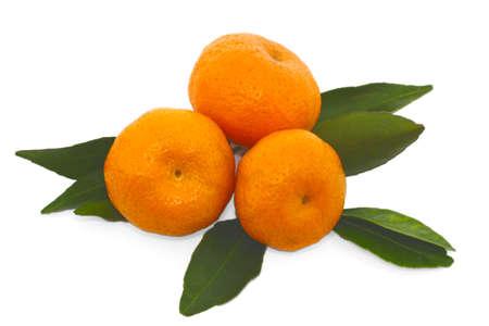 tangerine isolated Stock Photo