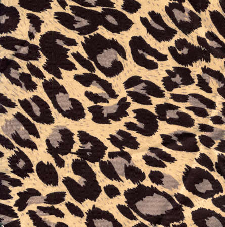 leopard fur as background Stock Photo