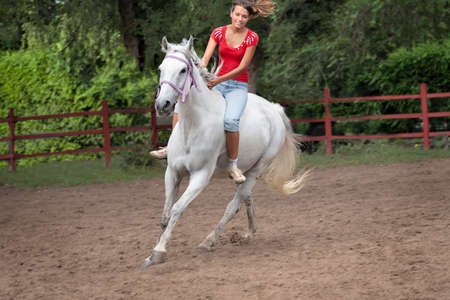 Horsewoman riding photo