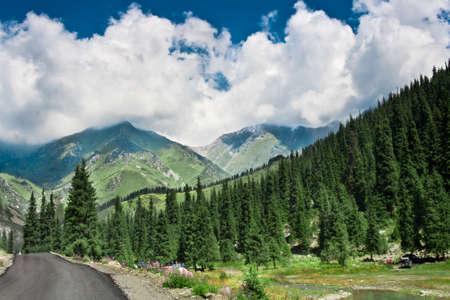 paesaggio estivo in montagna