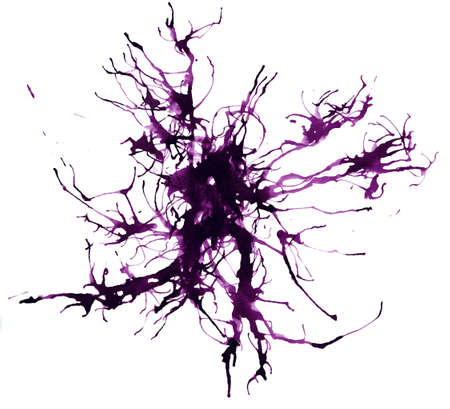 splatter  blob   Ink  photo