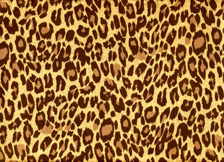 leopard print: leopard image fur as background Stock Photo