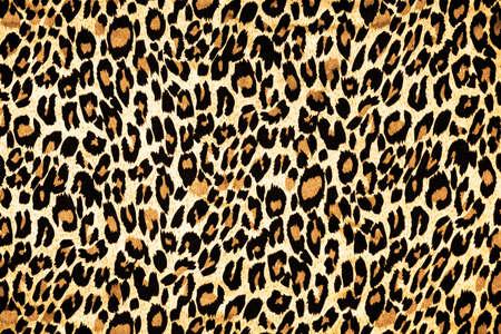 huella animal: piel de leopardo como fondo