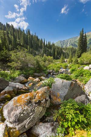 Mountain landscape Central Asia Trans-Ili Alatau