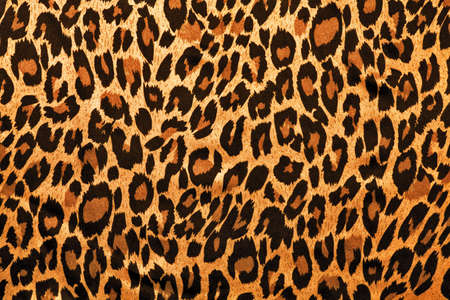 leopard image fur as background