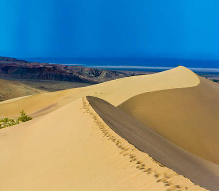 dunes: Desert landscape panorama dunes