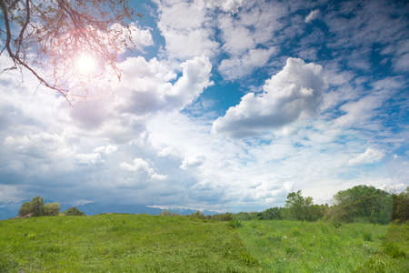 unexplored: nature  landscape summer day sun meadow Stock Photo