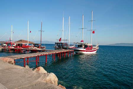 yachts sea harbor
