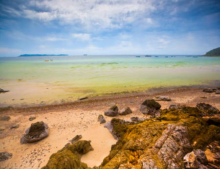 beach  sea  wave  landscape Stock Photo