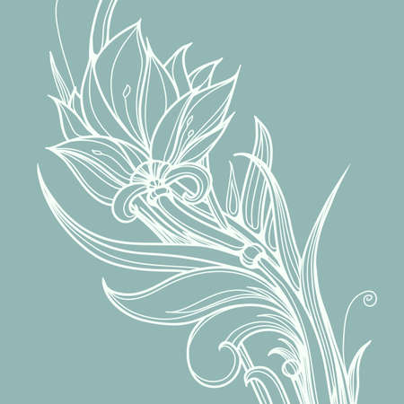 page borders: White lotus flower.Decorative floral background with hand drawn calligraphy style flower.