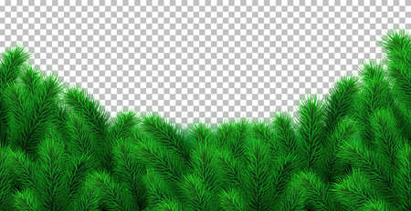 Fir branch border isolated on transparent background. Vector Christmas illustration, frame, arch, decoration. Perfect for Xmas banner, header, flyer. Winter spruce