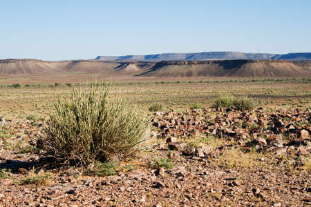 parch: Landscape in Namibia