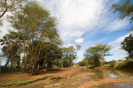 River Landscape in Tsavo National Park, Kenya