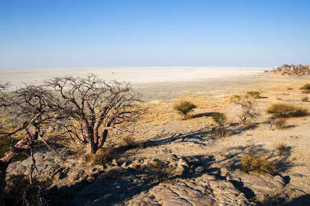 View from Kubu Island in Makgadikgadi Area over Sowa Pan