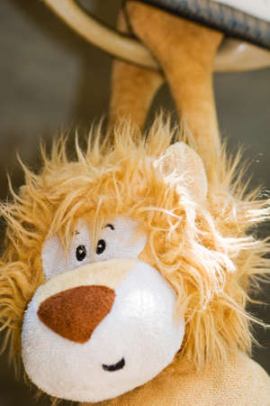 stuffed toy: Close up of a cuddly plush toy