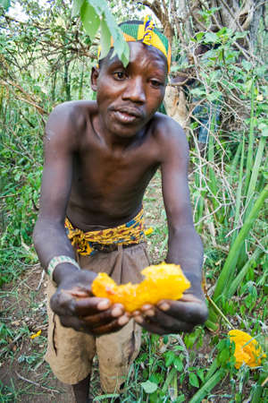 LAKE EYASI, TANZANIA - FEBRUARY 18: An unidentified man from Hadza tribe shares honeycomb with other people in the bush, on February 18, 2013 in Tanzania. Hadzabe tribe threatened by extinction.