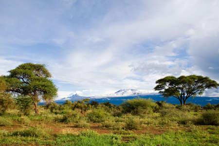 Mount Kilimanjaro  Highest mountain in Africa,Kibo and Mawenzi Summit of Kilimanjaro  Stock Photo