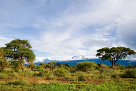 Mount Kilimanjaro  Highest mountain in Africa,Kibo and Mawenzi Summit of Kilimanjaro  Stock Photo