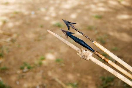 extinction: Fl�ches empoisonn�es diff�rents utilis�s pour la chasse par la tribu Hadzabe. Hadzabe tribu menac�e d'extinction.