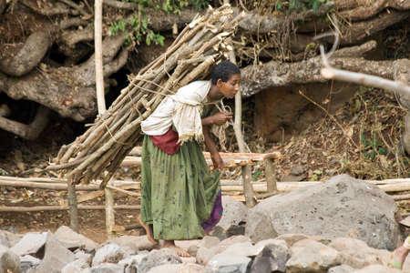 ethiopian ethnicity: BARHIR DAR, ETHIOPIA - FEBRUARY 26, 2010: Unidentified woman carries heavy wood on her back in Ethiopia. Editorial
