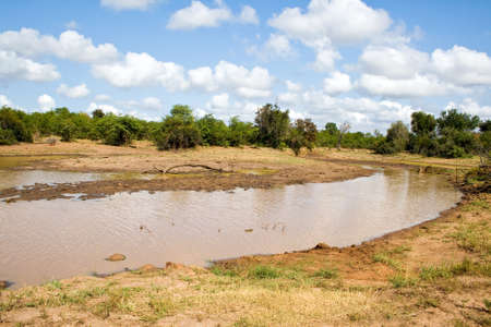 the water hole: Water hole in Kruger National Park South Africa. Stock Photo