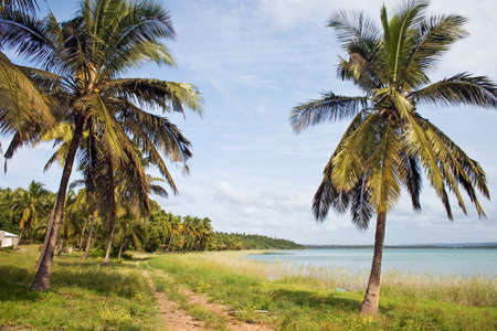 Shoreline in Mozambique, East Africa. Stock Photo
