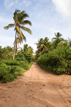 Road in Mozambique, East Africa.
