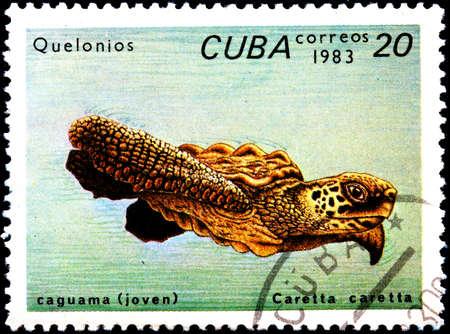 CUBA - CIRCA 1983:A Postage Stamp Shows Animal Caretta Caretta, circa 1983