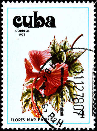 stamp collecting: CUBA - CIRCA 1978 A Postage Stamp Shows Flowers of the Pacific Ocean, circa 1978