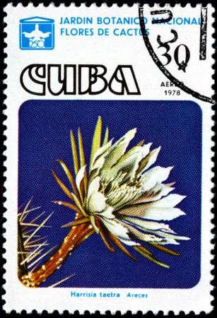 philatelic: CUBA - CIRCA 1978 A Postage Stamp Shows a Cactus - Harrisia Taetra, circa 1978 Stock Photo