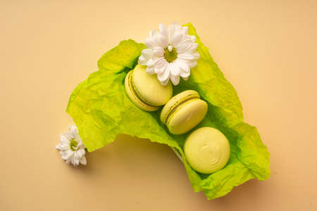 Three green pistachio macaroons cakes in a gift box with green wrapping paper with buds of white flowers gerbera or chamomile. Copy space. Bakery, cooking, gifts, conceptual and advertising.