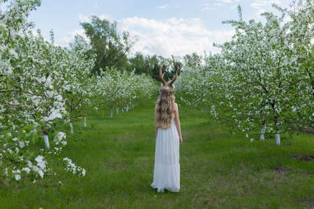 Teen beautiful blonde girl wearing white dress with deer horns on her head and white flowers in hair stays with her back turned away in a blooming garden covered with white flowers. Copy space.