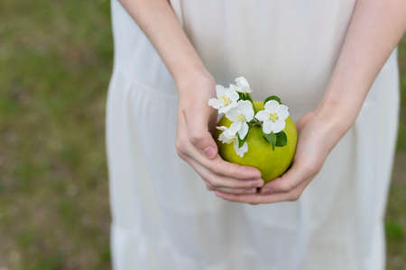 The hands of a teenage girl wearing a white dress are carefully kept by a green apple with white flowers blooming apple trees. Copy space. Conceptual and commercial design.