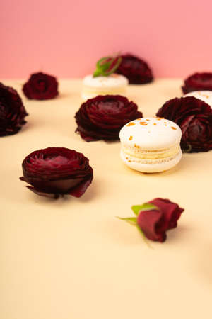 Three white macaroons cakes artfully laid out among the buds of dark red burgundy roses on a yellow and pink background. Copy space. Bakery, cooking, gifts, conceptual and advertising. Фото со стока