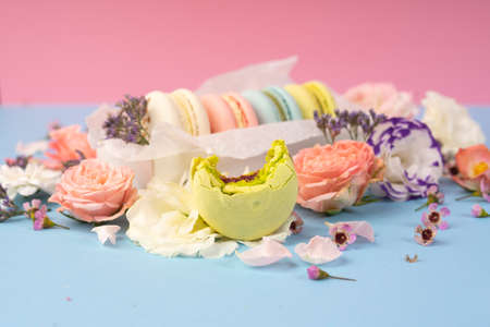 Multicolored macaroons cakes with big and small different flower buds in a gift box with wrapping paper on a blue and pink background. Copy space. Bakery, cooking, gifts, conceptual and advertising.