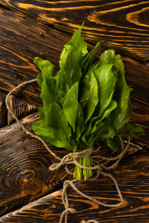 A bundle of fresh green sorrel tied with a string lies on the old wooden table of rough texture. Copy space. Advertising design. Kitchen, restaurant, cooking.
