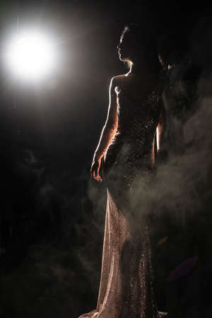 Silhouette of a slim, artistic girl wearing an elegant evening dress in theatrical fog. Sensual, conceptual and fashionable design. Copy space. Фото со стока