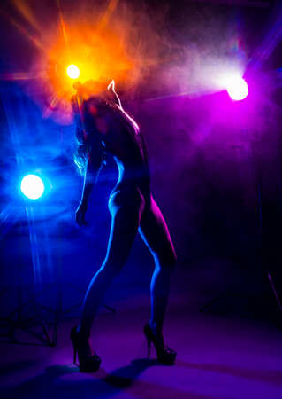 Beautiful slim dancer girl wearing lingerie and high heels posing in the rays of light in a colorful smoke. Artistic, conceptual, silhouette, commercial and advertising design.