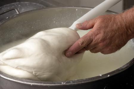 provola: preparation of mozzarella in a diary