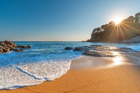 Tropical beach. Summer tropical landscape. Sunrise over paradise beach. Resort background.